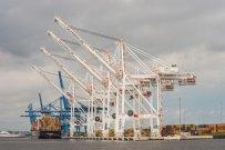 import i eksport towarów